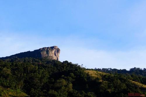 Descubrir la Zona Turística Nacional de Moc Chau - ảnh 1