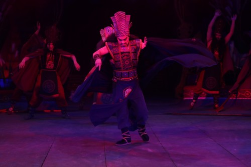 Vietnam's circus takes new direction  - ảnh 2