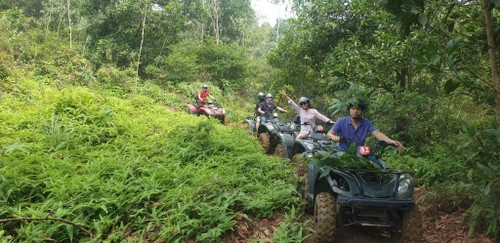 Driving all-terrain vehicles through the forests of Dong Mo - ảnh 3
