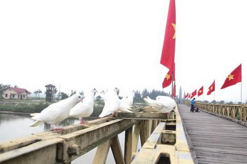 War-torn Quang Tri emerges as peace symbol - ảnh 3