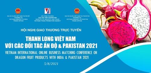 Vietnam seeks more export of dragon fruit to India, Pakistan - ảnh 1