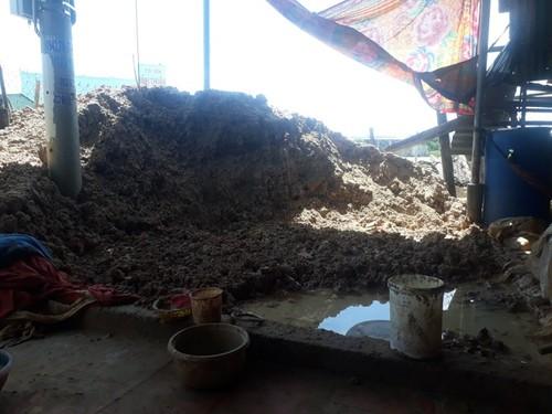 Erhaltung und Entfaltung des Keramikdorfes der Cham in Binh Thuan - ảnh 1