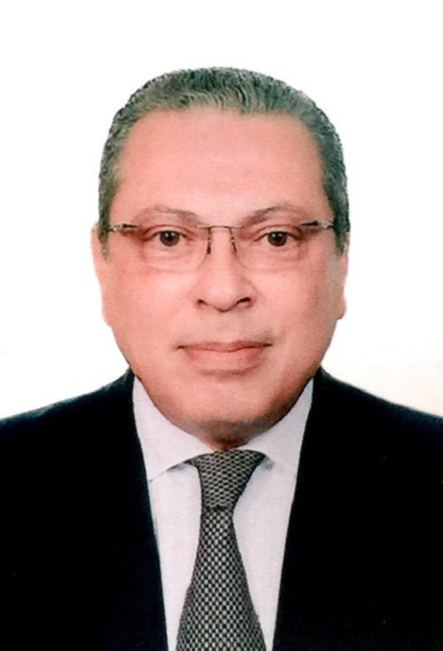 Egyptian Ambassador highlights time-honored Vietnam-Egypt relations  - ảnh 1