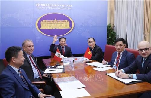 Celebran la cuarta Consulta Política Vietnam-Perú - ảnh 1