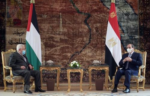 Egipto confirma que seguirá apoyando a Palestina - ảnh 1