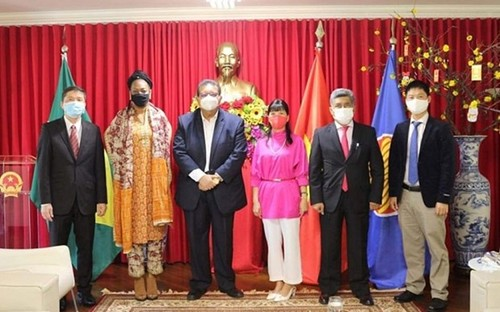 Vietnam espera promover la cooperación multifacética con Surinam y Bolivia - ảnh 1