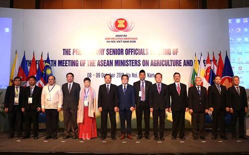 Huê accueille la conférence des ministres de l'Agriculture et de la Sylviculture de l'ASEAN - ảnh 1