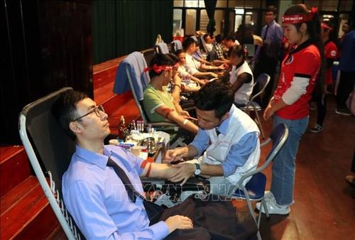 Un Dimanche rouge à Quang Binh et à Nam Dinh - ảnh 1