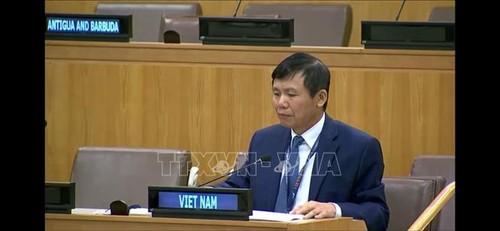 Le Vietnam promeut le dialogue dans le règlement des conflits en RDC - ảnh 1