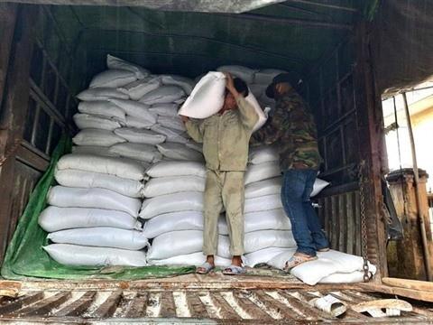 Le gouvernement fournit du riz aux provinces sinistrées - ảnh 1