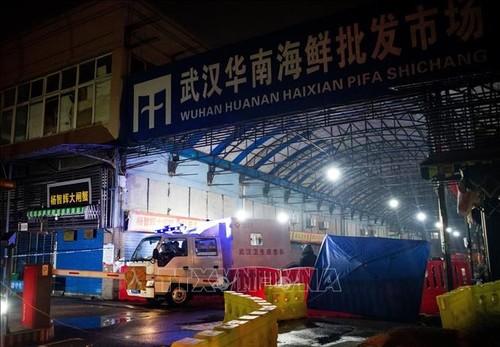 Coronavirus en Chine: Les experts de l'OMS visitent le marché de Wuhan, premier foyer de l'épidémie - ảnh 1