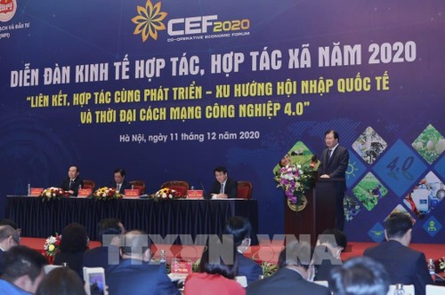 Le Forum sur l'économie coopérative 2021 - ảnh 1
