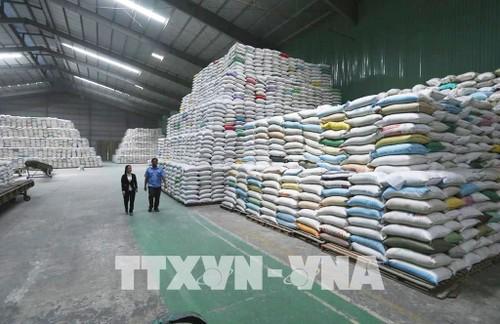 Exportation: une croissance de 25,5% au cours des sept mois passés - ảnh 1
