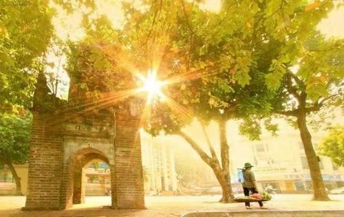 Очарование осени в городе Ханое - ảnh 1