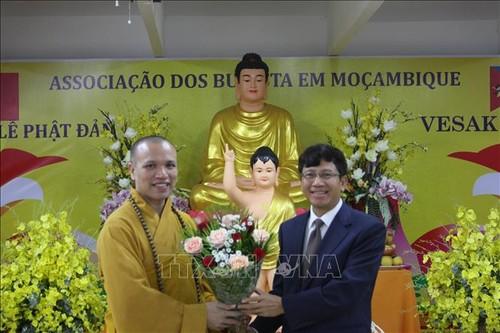 Lễ Phật đản 2019 - Cầu nối văn hóa Việt Nam và Mozambique  - ảnh 1