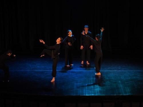 Đối thoại giữa múa đương đại và các loại hình nghệ thuật khác - ảnh 2