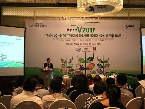 Les perspectives de l'agriculture vietnamienne en 2017 - ảnh 1