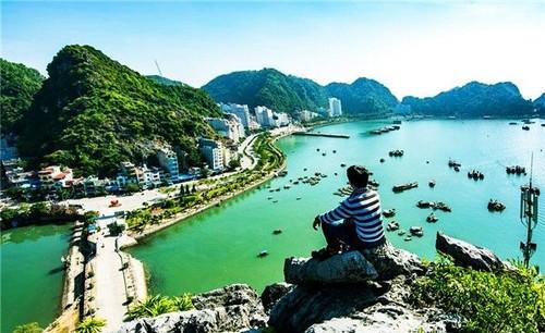 Haiphong cherche à faire du tourisme le secteur phare de l'économie - ảnh 1