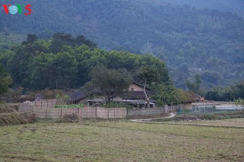 Le foyer dans la culture Tay à Binh Lieu (Quang Ninh) - ảnh 2