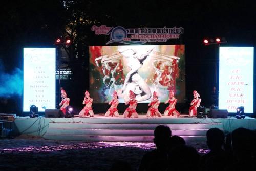 10e anniversaire de l'inscription de Cu Lao Cham parmi les réserves de biosphère du monde - ảnh 1