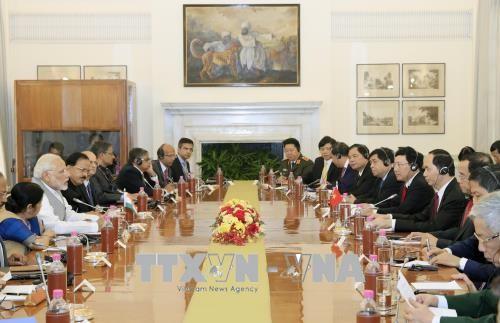 Chủ tịch nước Trần Đại Quang hội đàm với Thủ tướng Ấn Độ Narendra Modi - ảnh 2