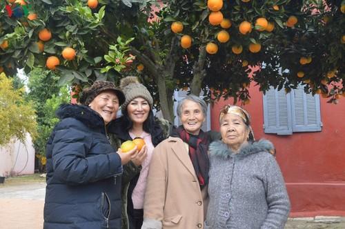 Xuân về ấm lòng người Việt ở Sidihaya, Maroco - ảnh 2
