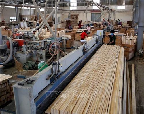 Quy định Hệ thống bảo đảm gỗ hợp pháp Việt Nam - ảnh 1