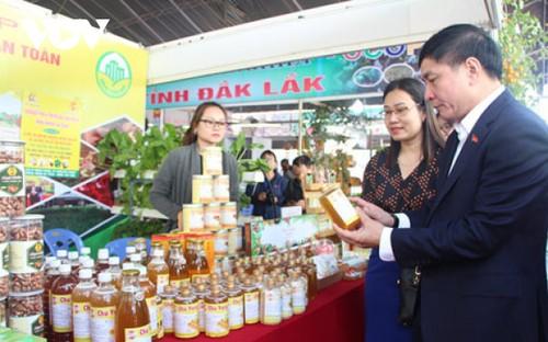 Sản phẩm OCOP bước đầu làm mới nông thôn tỉnh Đắk Lắk - ảnh 2