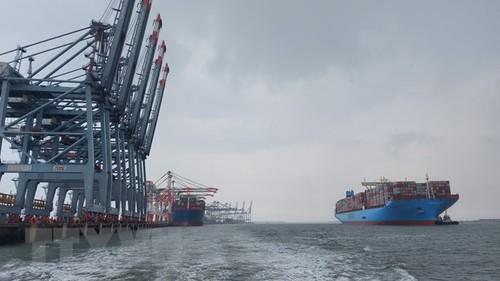 Bà Rịa-Vũng Tàu đón tàu container lớn nhất thế giới Margrethe Maersk - ảnh 1
