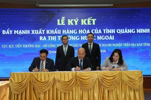 Quảng Ninh xúc tiến đầu tư với các tổ chức, đại diện thương mại nước ngoài - ảnh 3