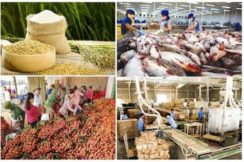 Vượt khó khăn – Xuất khẩu nông sản phấn đấu đạt tăng trưởng cao - ảnh 1