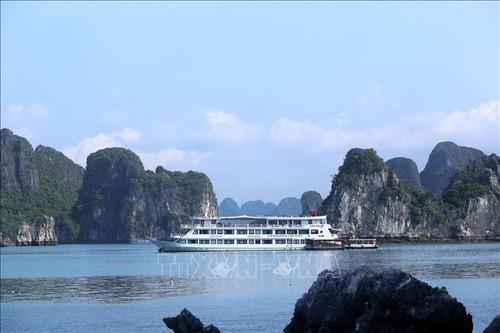 Tỉnh Quảng Ninh khẩn trương phục hồi và phát triển ngành du lịch, dịch vụ - ảnh 1