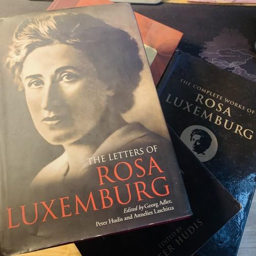 Quỹ Rosa Luxemburg – Đối tác thân thiết của các cơ quan Chính phủ và Quốc hội Việt Nam - ảnh 2