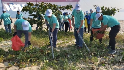 Hơn 100 đoàn viên thanh niên Đà Nẵng dọn vệ sinh môi trường biển - ảnh 1
