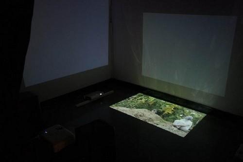 Số hóa văn hóa nghệ thuật – Khi công nghệ chắp cánh cho trải nghiệm - ảnh 2