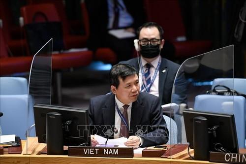 Việt Nam chủ trì phiên họp về Nam Sudan tại Liên hợp quốc - ảnh 1