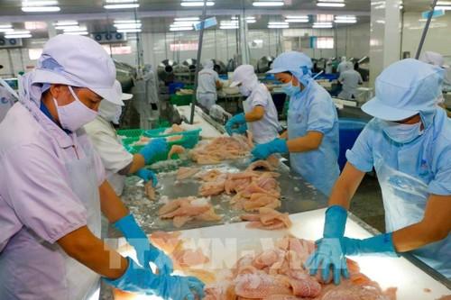 Doanh nghiệp Việt kiều bắc cầu hàng vào Châu Âu - ảnh 1
