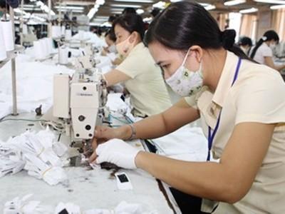En marcha en Vietnam proyecto en favor de derechos obreros y sindicales - ảnh 1
