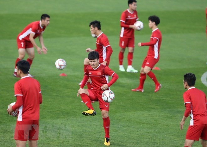 Selección nacional de fútbol de Vietnam invicta en 18 partidos, destaca FIFA - ảnh 1