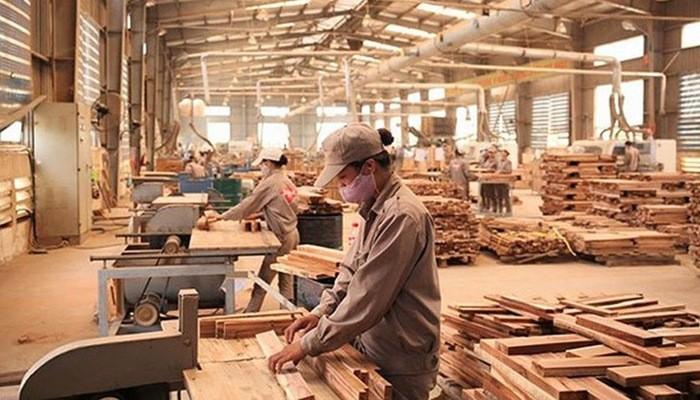 Vietnam planea lograr 12 mil millones de dólares en exportación silvícola - ảnh 1