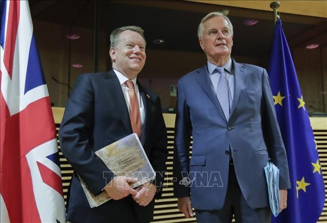 El Reino Unido y la UE comienzan la octava ronda de negociaciones sobre un acuerdo comercial post-Brexit - ảnh 1