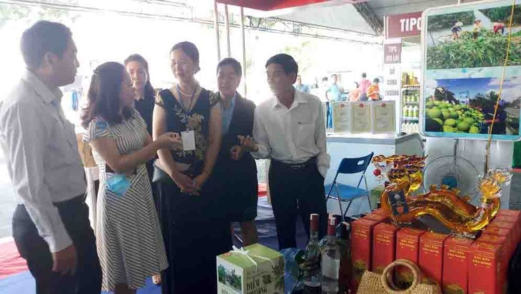 Ciudad Ho Chi Minh fortalece la cooperación con la región sureña para aumentar sinergias - ảnh 2