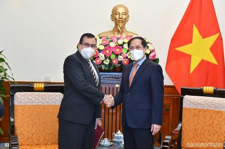 Vietnam y Panamá afianzan la cooperación multifacética - ảnh 1