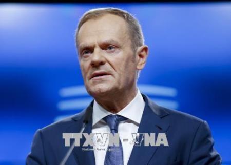 Líder del Consejo Europeo urge a reanudar las conversaciones comerciales con Estados Unidos - ảnh 1