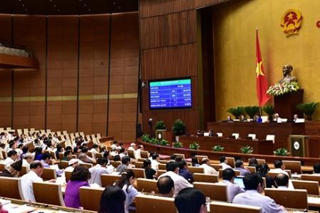Electores vietnamitas opinan sobre la aprobación de la Ley de Seguridad Cibernética - ảnh 1