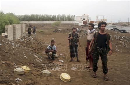 Situación en Yemen podría empeorar, alerta ONU - ảnh 1