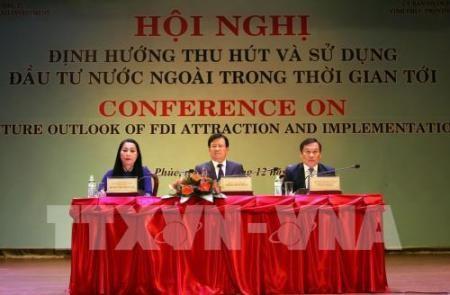 Debaten orientación de la atracción y el uso de la inversión extranjera en futuro - ảnh 1