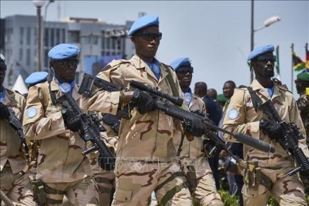 Mueren en un atentado en Mali diez cascos azules de la ONU - ảnh 1