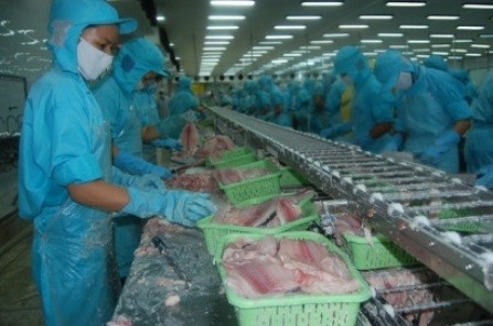Sector acuícola de Vietnam aprovecha oportunidades para crecer en 2019   - ảnh 1