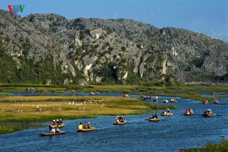 La magnífica belleza de la Reserva Natural de Van Long   - ảnh 1